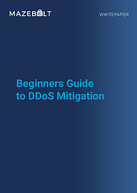 Whitepaper-Beginners Guide to DDoS Mitigation