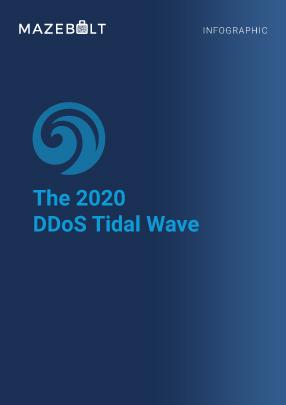 Infographic - Major 2020 DDoS Attacks