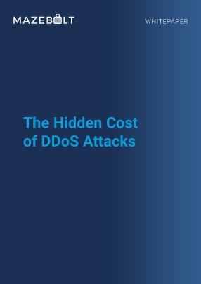 Whitepaper- Hidden Cost of DDoS Attacks