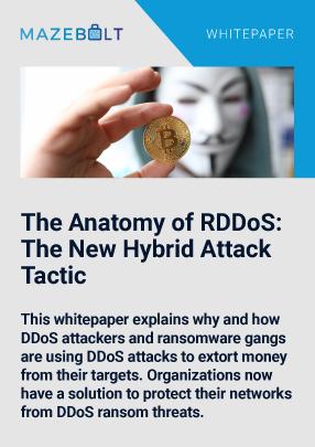 ransomware-ddos-attack