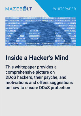 whitepaper_inside_a_DDoS_hackers_mind
